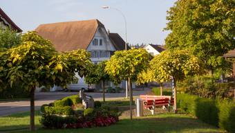 100 Jahre Verkehrs- und Verschönerungsverein Sarmenstorf