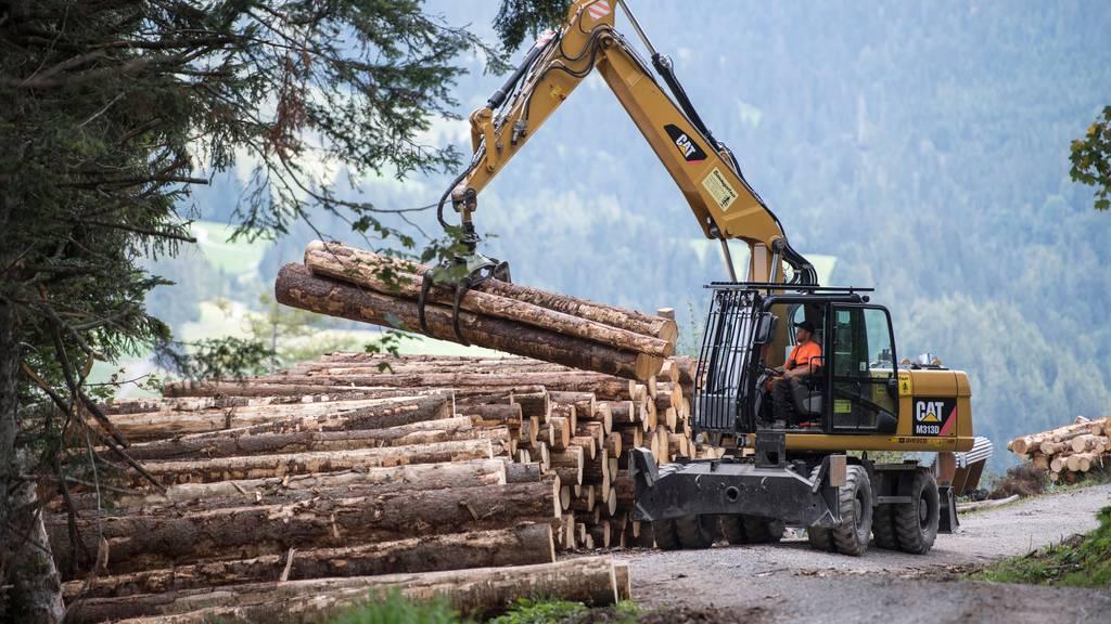 Schweiz soll ab 2040 klimapositiv werden