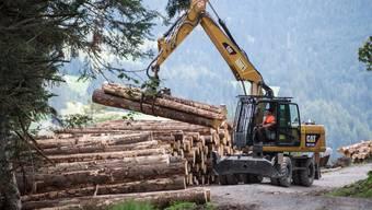 In der Forstwirtschaft sollen gemäss Grüne vermehrt Technologien eingesetzt werden, die negative Emissionen ermöglichen. (Symbolbild)