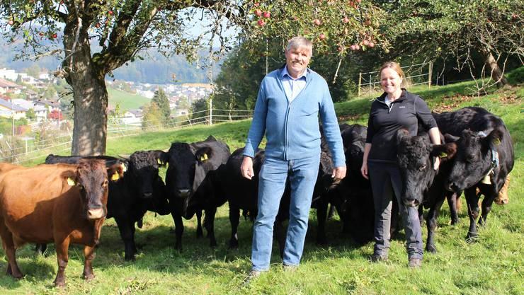 Silvia und Andreas Honegger pflegen seit Anfang Jahr 700 Kirschbäume und diese Kuhherde.