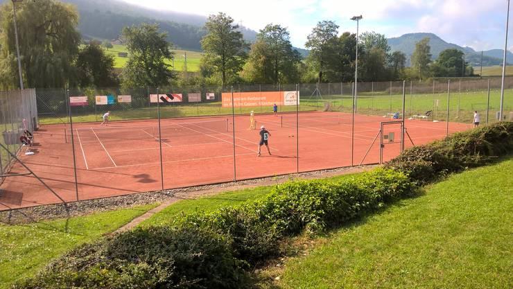 Der Tennisclub Frick freut sich auf den Frickberg-Cup