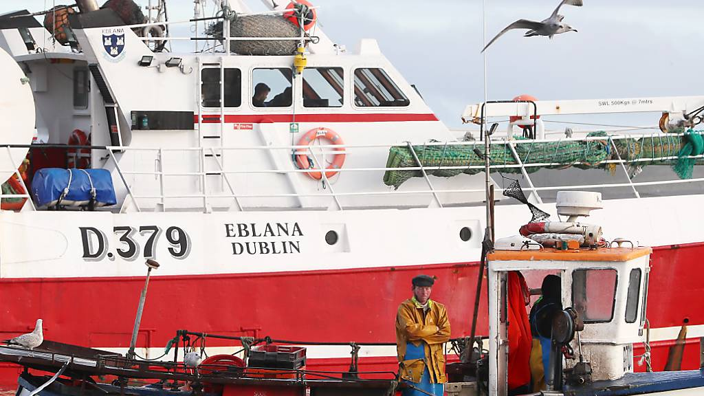 Brexit-Handelspakt: Immer noch grosser Streit um den Fisch