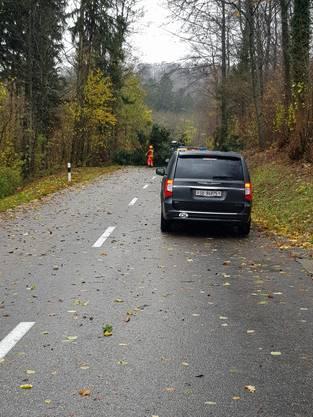 Sturmwetter im Aargau: Auf der Barmelweid ist am Sonntag bei Windgeschwindigkeiten von bis zu 70 Stundenkilometern ein Baum umgestürzt.