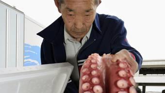 Dieser Oktopuss wurde im Gewässer vor Fukushima gefangen