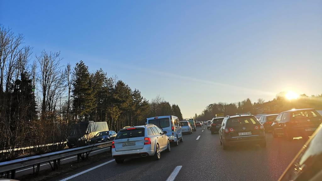 Autofahrer stehen bereits ab Meggenhus im Stau.