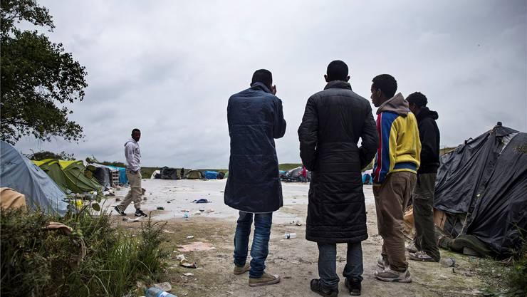 Sehnsüchtiger Blick in die Ferne: Migranten in ihrem Lager in Calais.