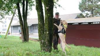 Labradorhündin Bean zeigt Hans Döbeli an, dass sie den Käfer erschnüffelt hat.