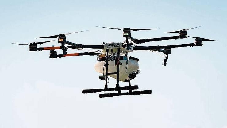 Das Geschäft mit Drohnen wächst. Im Bild besprüht eine Agrar-Drohne Rebberge in Rapperswil.