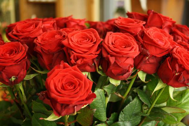 Rote Rosen sind der Klassiker und noch immer am besten verkauft
