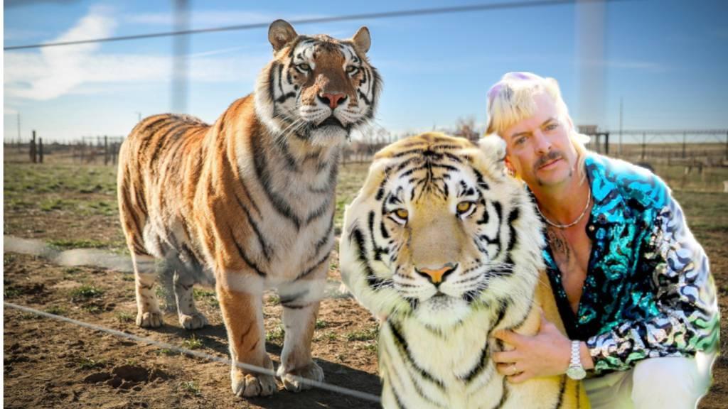 Justiz beschlagnahmt die Grosskatzen von «Tiger King»