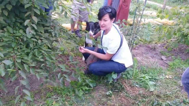 Auf der Trüffelplantage