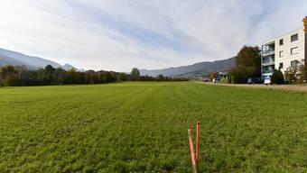 Auf diesem Grundstück am Blochenmoosweg in Balsthal will die Centravo AG ein Produktions- und Lagergebäude erstellen. (Archivbild)
