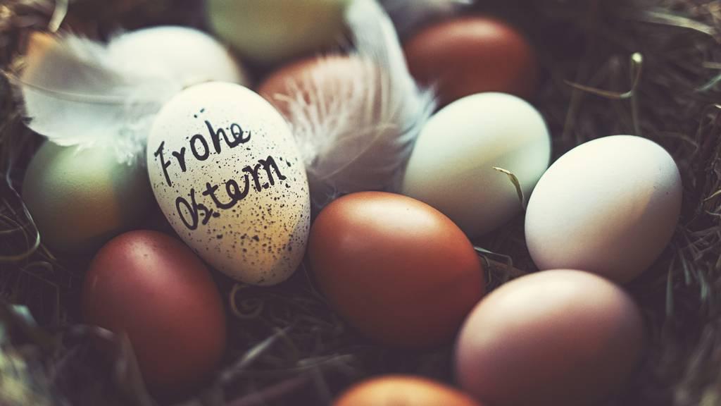 Ei ei ei: Das grosse Oster-Wuko