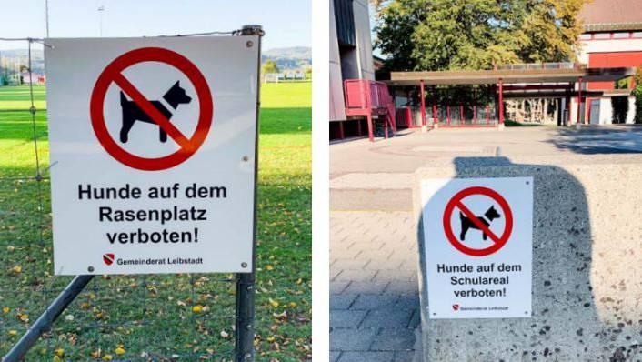 Hunde sind auf dem Schulareal von Leibstadt nicht mehr erlaubt.