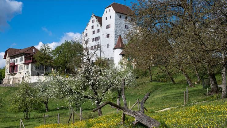 Das Schloss Wildegg lockt nicht nur im Sommer viele Besucherinnen und Besucher an.