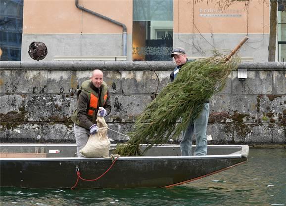 Geschafft: Das letzte Tannli geht zusammen mit dem mit 30 Kilogramm Kies gefüllten Jutesack über Bord.