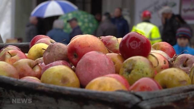 Traumjahr für Obst
