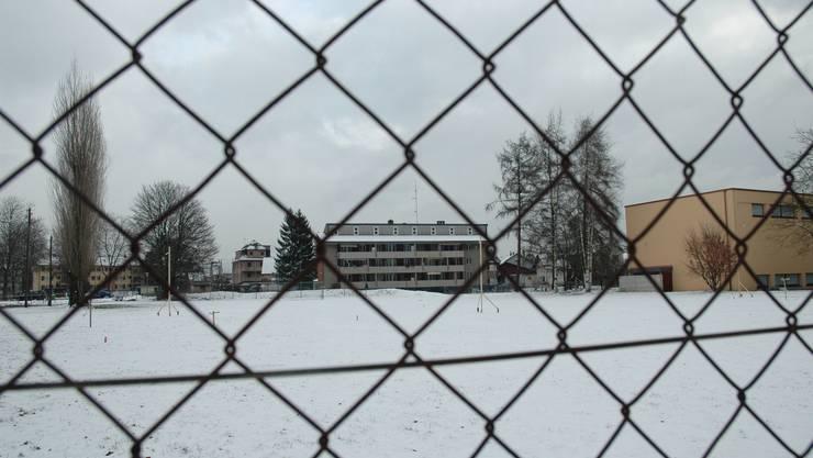 Geplanter Standort: der Rasenplatz der Schulanlage Zelgli.  nem