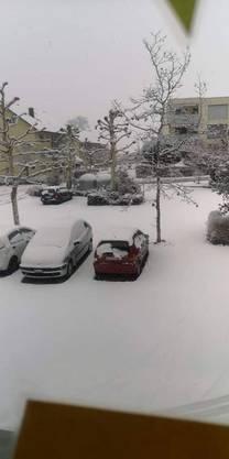 Schneebedeckte Autos in Teufenthal.