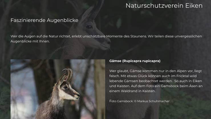 Die Webseite des Vereins www.nveiken.ch