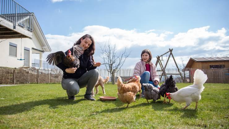 828ab2b61ae12c Neuer Trend  Immer mehr Leute halten Hühner als Haustiere - Kanton ...