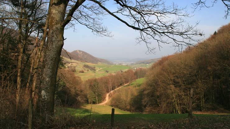 Das Schenkenbergertal, aufgenommen in Thalheim, Blickrichtung Ost.