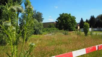 Hier im Zelgli Quartier neben der Schule hätte der Skatepark gebaut werden sollen