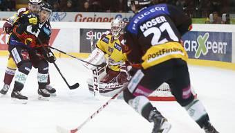 Hielten dem Druck stand: die Spieler des SC Bern im Spiel gegen Genève-Servette
