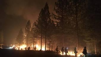 Der Waldbrand Ende Dezember nahe des Comer Sees in Italien zerstöre 1000 Hektar Wald und mehrere Gebäude. (Symbolbild)