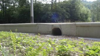 In Suhr wird ein Kleintierdurchgang wie hier in Dättwil (Bild) eingebaut.