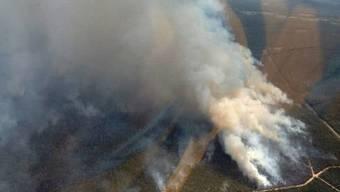 Riesige Feuer wüten in Australien