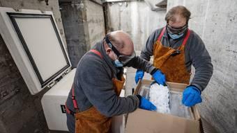 Auf minus 78 Grad gekühlt wird der Impfstoff für den Transport. Damit es keine Verbrennungen gibt, tragen die Mitarbeiter der Armeeapotheke Handschuhe, Schutzbrille und Lederschürze.