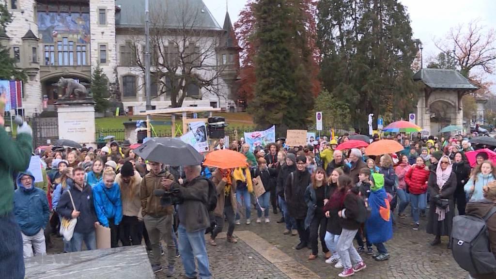 Green vs. Black Friday: Klimademo gegen Konsum-Rausch