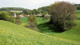 Die Mühledorfer haben bisher ihr Wasser aus eigenen Quellen beziehen können. Nun baut die Gemeinde eine öffentliche Wasserversorgung auf. Ob das Wasser der Quelle in der Rotenmatte (im Bild rechts unten) auch genutzt werden kann, ist wegen deren Nitratbelastung nicht gesichert.
