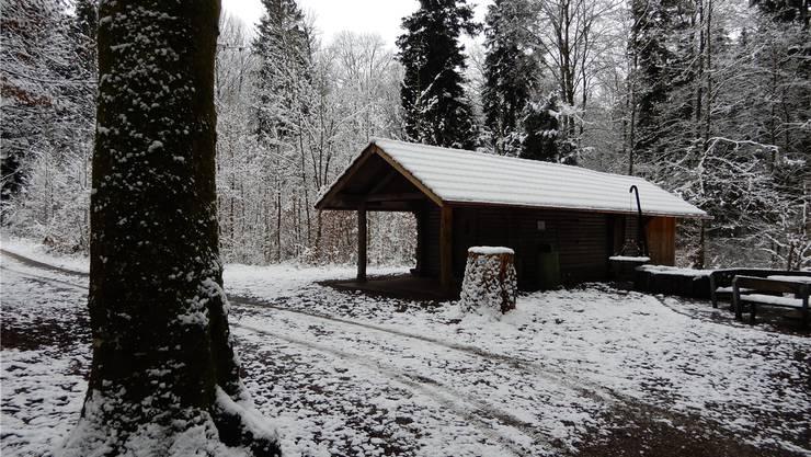 Januar 2019: Die Niederlenzer Waldhütte ist wieder instandgestellt. zVg