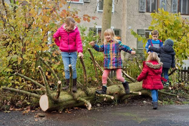 Der untere Stamm ist jetzt ein Kletterbaum im Kindergarten Asylstrasse ...