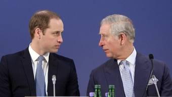 Die Initianten der Konferenz: Prinz Charles (r) und Prinz William