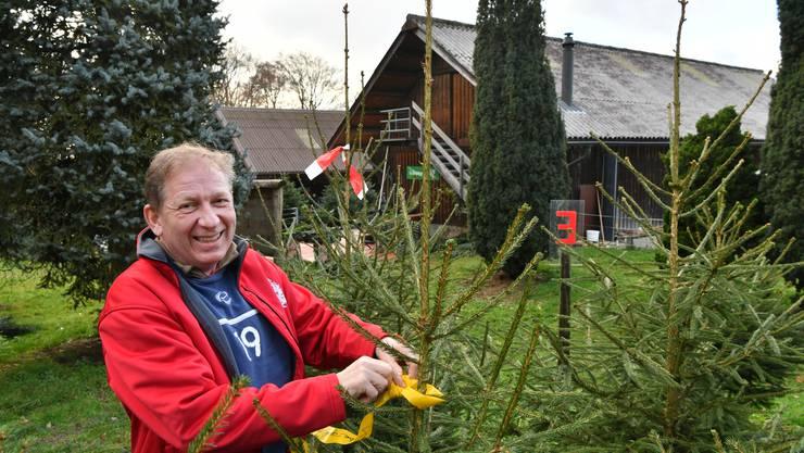 Er ist der «Herr der Tannen»: George Studer betreibt die Tannenbaumanlage auf dem Born bei Kappel bei Olten. Mit einem gelben Band werden Bäume markiert, die Online oder auf dem Feld reserviert wurden.