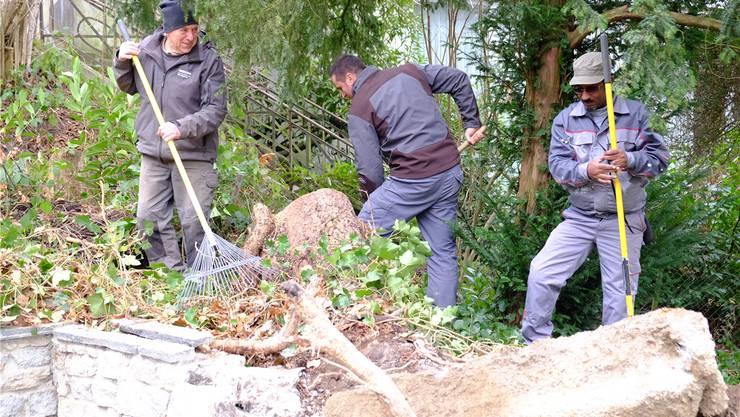 Schon gegen 50 Sozialhilfebezüger konnten in den vergangenen Monaten mit «jobwärts» in den Wynentaler Gemeinden gemeinnützige Arbeit leisten. Im Bild zwei Männer beim Einsatz für den Reinacher Forst mit Mentor Heinrich Siegrist aus Burg (links).