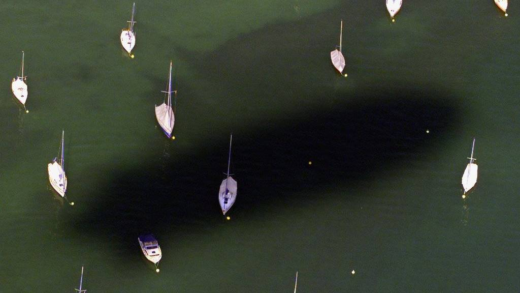Auf dem Bodensee wurden mehrere Segelboot-Kapitäne vom Gewitter überrascht. (Archivbild)