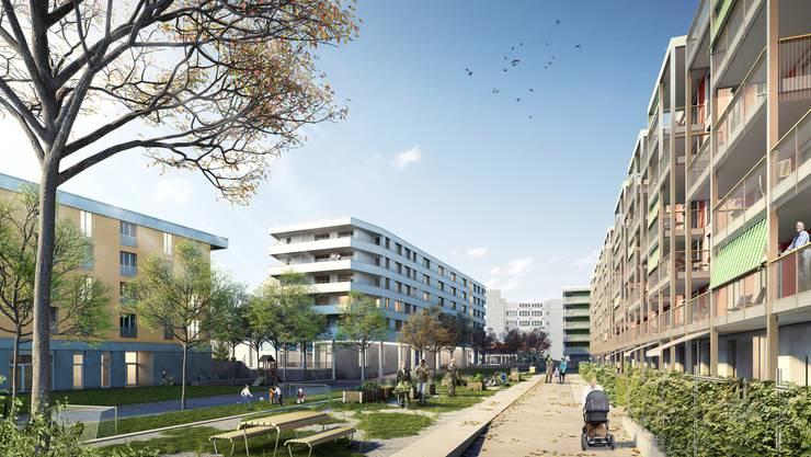 Bis 2020 soll die Stadtsiedlung Reitmen entstehen. Sie bietet Platz für 350 Bewohner.