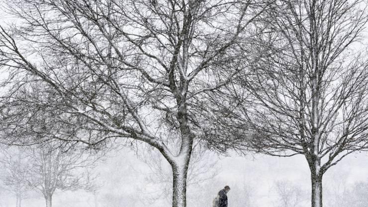 Eine Studentin überquert bei Schneefall den Campus der Taylor Universität in Upland, Indiana. Dem Nordosten der USA droht ein heftiger Wintersturm.