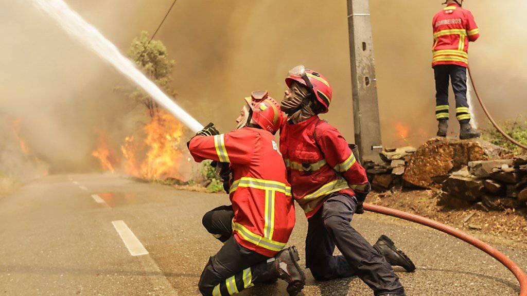 Portugiesische Feuerwehrleute im Einsatz in der Nähe des Ortes Sandinha