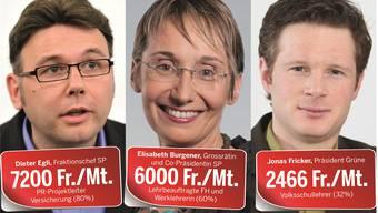 Diese Politiker machen kein Geheimnis um ihre Löhne.