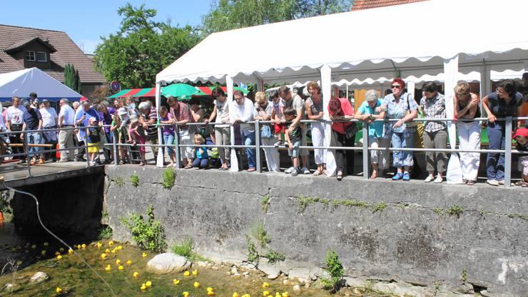 Seit 2011 findet jeweils im Sommer das Bachfest in Birmensdorf statt – nun könnte damit Schluss sein.