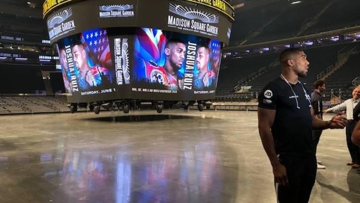 Box-Arena, Basketball-Tempel, Eishockey-Palast und jetzt Wahllokal: Der Madison Square Garden erhält eine neue Aufgabe
