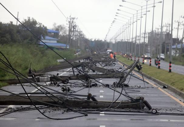 Von Windkraft gefällte Stromleitung im Süden Thailands nach dem Durchzug des Tropensturms Pabuk.
