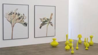 Die gelben Objekte von Fabien Clerc mit Thomas Flechtners Fotografien.