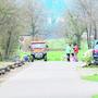 Die Baumstamm-Konstruktion verhindert, dass Spaziergänger parkieren.