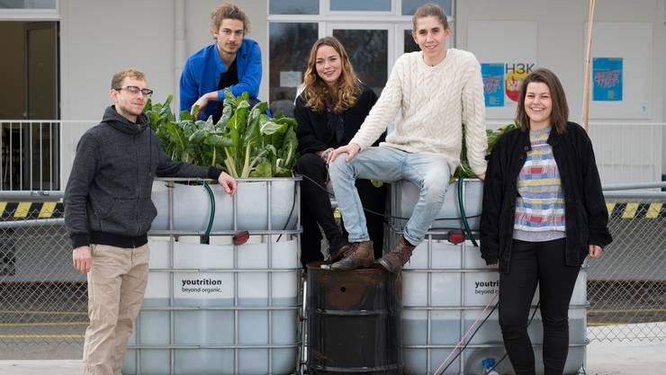 Das Youtrition-Team mit seinem Mangold-Beet, das auf ungewöhnliche Art gedüngt wird: (v. l.) Moritz Keller, Cilio Minella, Elena Eigenheer, Elias Buess und Sophie Plattner.